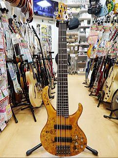 アイバニ6弦Bass.JPG