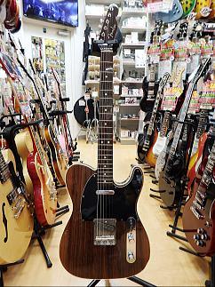 Fender Rose.JPG
